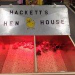 Hackett's Hen House!
